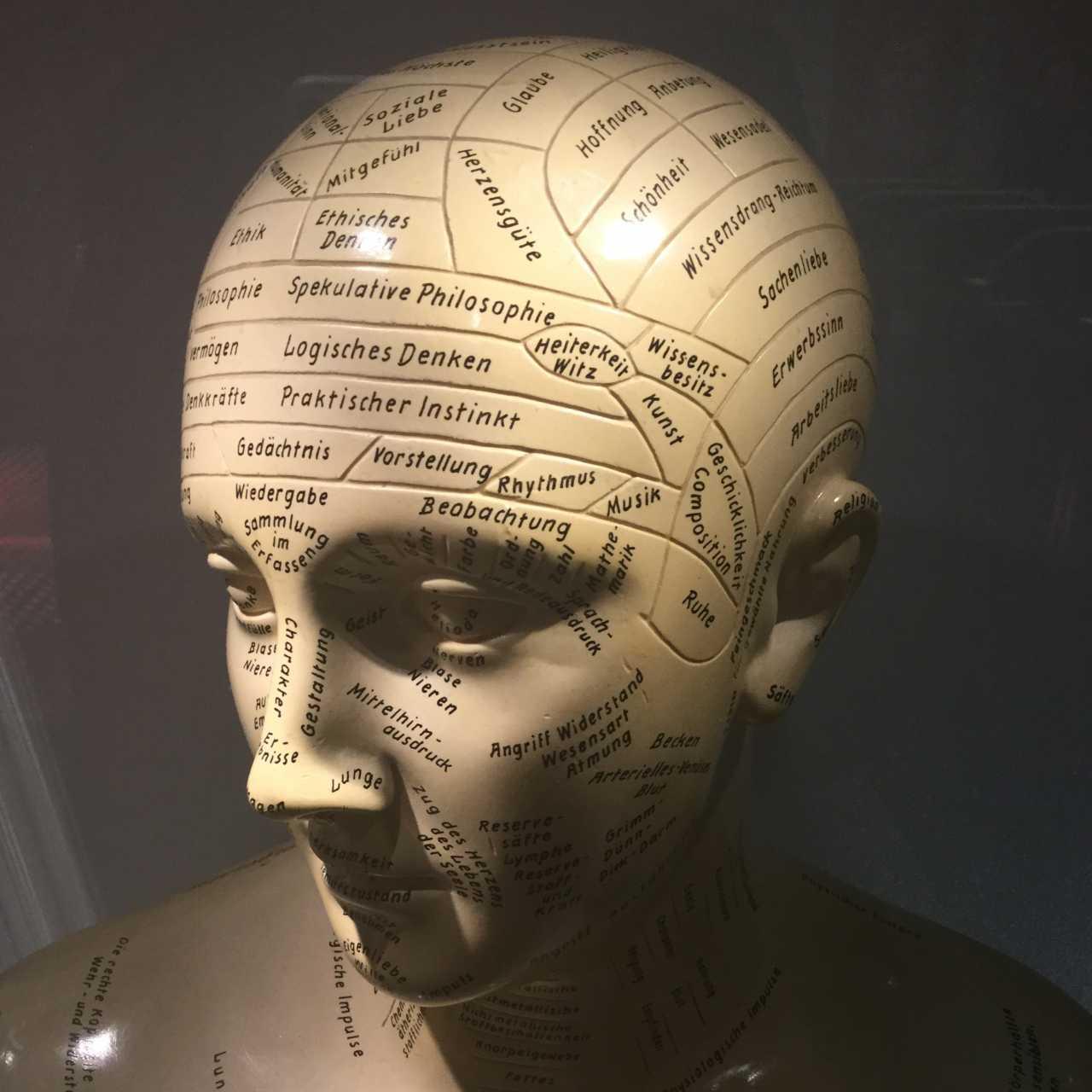 Wo sitzt die Lüge im menschlichen Gehirn?